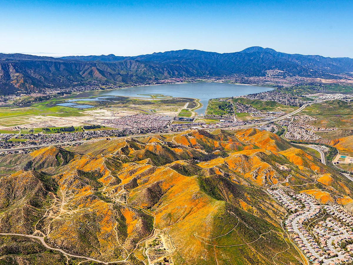 Blog photo of the California Wildflowers covering the mountains near Lake Elsinore, California