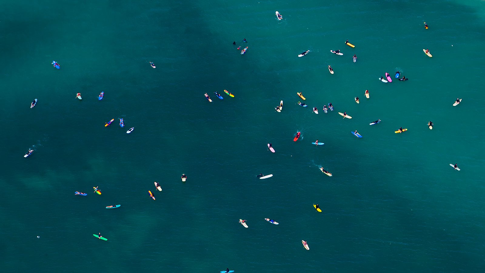 Close-up blog photo of surfers in Dana Point, California enjoying the warm summer weather